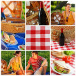 Picnic collage — Stock Photo