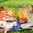 Friends on picnic — Stock Photo #1595783