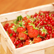 Red currant & strawberry in basket — Stock Photo #1622907