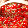 Red currant in basket — Stock Photo
