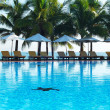 piscina tropical — Foto Stock #1624266