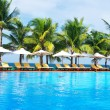 Tropical pool — Stockfoto #1624589