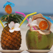 Tropical cocktails — Stock Photo #1693997