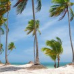 Caribbean wild beach — Stock Photo