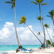 Caribbean beach — Foto Stock
