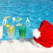 Tropical christmas — Stock Photo