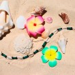 Beach still-life — Stock Photo #1717474