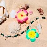 Beach still-life — Stock Photo