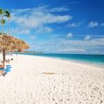 Caribbean beach — Stock Photo #1728983