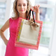 Woman shopping — Stock Photo #1799956