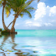 Caribbean beach - Stock Photo
