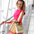 donna shopping — Foto Stock #1810948