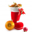 Christmas details — Stock Photo #1199889