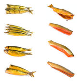 Set of smoked fish — Stock Photo