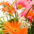 Yellow gerbera flower — Stock Photo #1245141