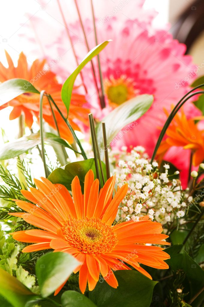 Yellow gerbera flower agaisnt green blurred background — Stock Photo #1245141