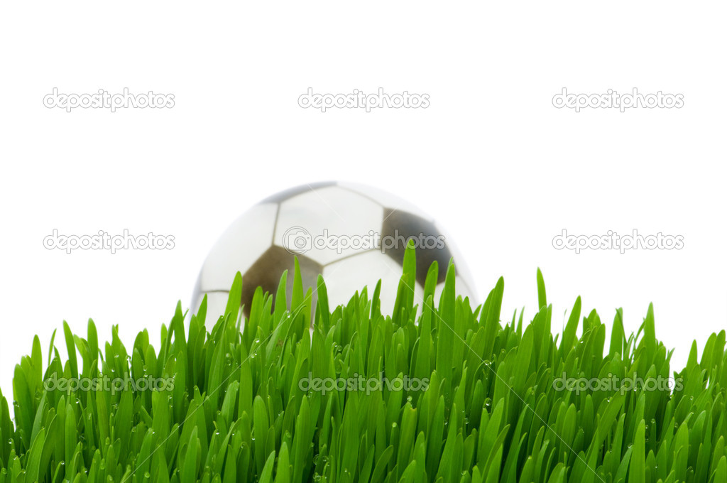 Sport concept - football on the green grass — Stock Photo #1245731