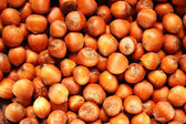 Hazel nuts arranged as the background — Stock Photo