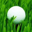 Golf ball on the green grass — Stok fotoğraf
