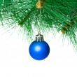 Christmas decoration on the tree - 图库照片