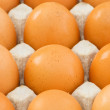 Stock Photo: Chicken eggs in carton