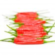 Red chili peppers isolated — Stock Photo