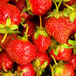 Lots of strawberries — Stock Photo #1634704