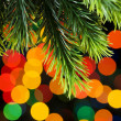 Close up of tree against blurred lights - Stock Photo