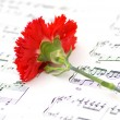 Royalty-Free Stock Photo: Red carnation flower on musical notes