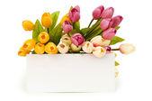 Tulpaner och tomt meddelande isolerade — Stockfoto