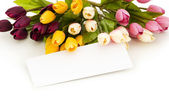 Tulips and blank message — Foto Stock