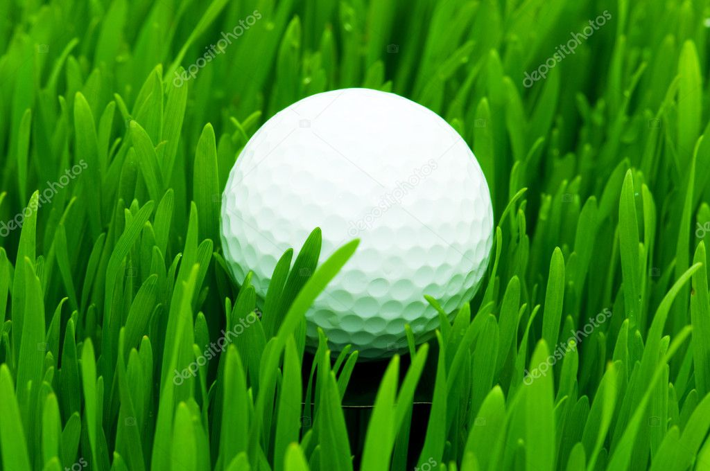 Golf ball on the green grass — Stock Photo #1632018