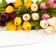 Tulips and blank message isolated — Stock Photo #1922798