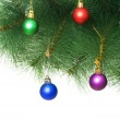 Christmas decoration on the tree — Stock Photo #1923317