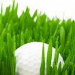 Foto Stock: Golf ball on the green grass