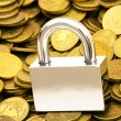 Stock Photo: Concept of financial security