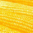 Extreme close up of yellow corn cobs — Stock Photo #1937752