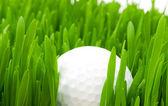高尔夫球场球和孤立的草 — 图库照片