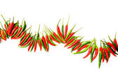 Red and green chili peppers isolated — Stock Photo