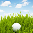 balle de golf sur l'herbe verte — Photo #1942089