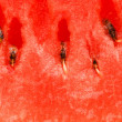 Extreme close up of watermelon — Stock Photo #1944540