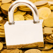 Stock Photo: Concept of financial security with lock