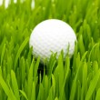 Golf ball on the green grass — Foto de stock #1946056