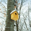 Bird house on the tree in winter - Stock Photo