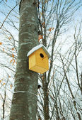 Bird house on the tree in winter — Stock Photo