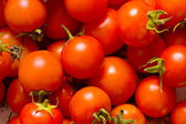 Many red tomatoes arranged — Stock Photo