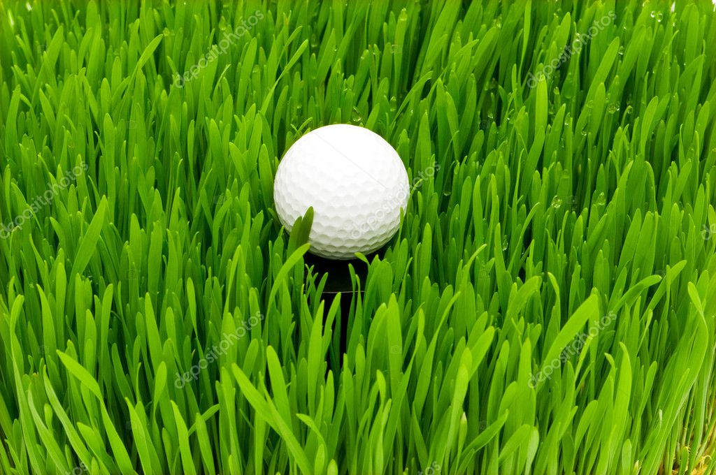 Golf ball on the green grass — Stock fotografie #1944394