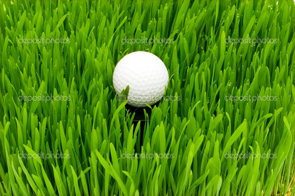 Golf ball on the green grass — Foto de Stock   #1944394