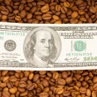 Close up of coffee beans and dollars — Stock Photo