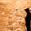 Lone fisherman during sunset — Stock Photo #2524889